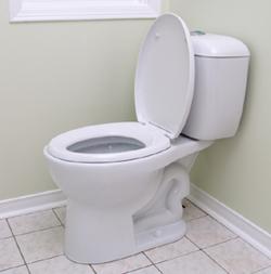 tips memilih ahli WC mampet